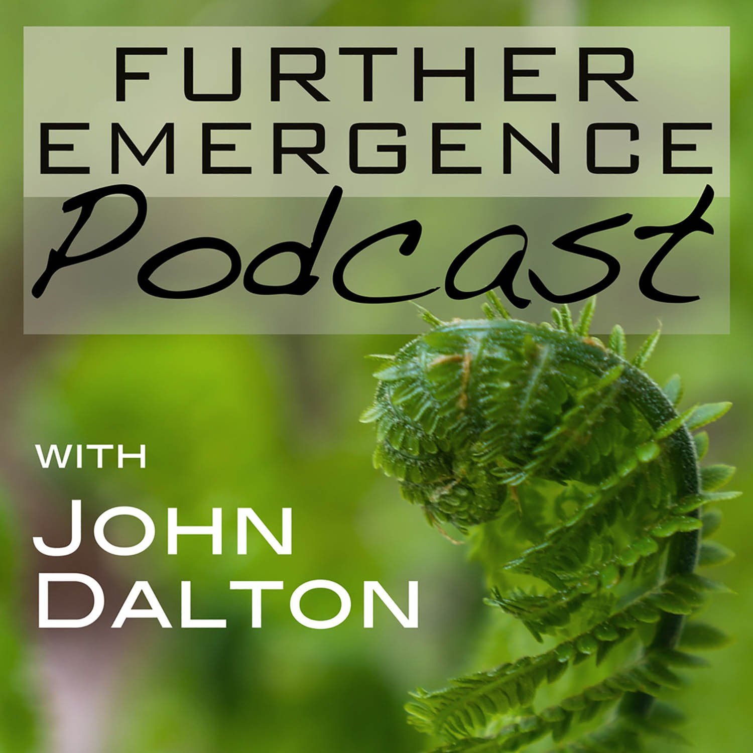 Further Emergence Podcast with John Dalton